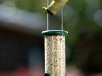 lintujen-talviruokinta-laitteet-5